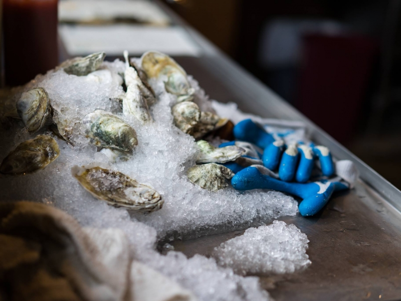 Jameson Harrington Oyster Photo.jpg