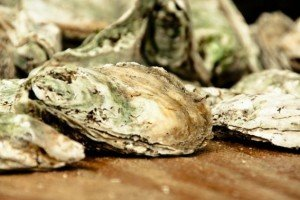 Eastern Shore Eateries Oysters