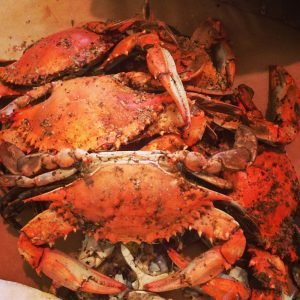 Ocean Odyssey Steamed Crabs